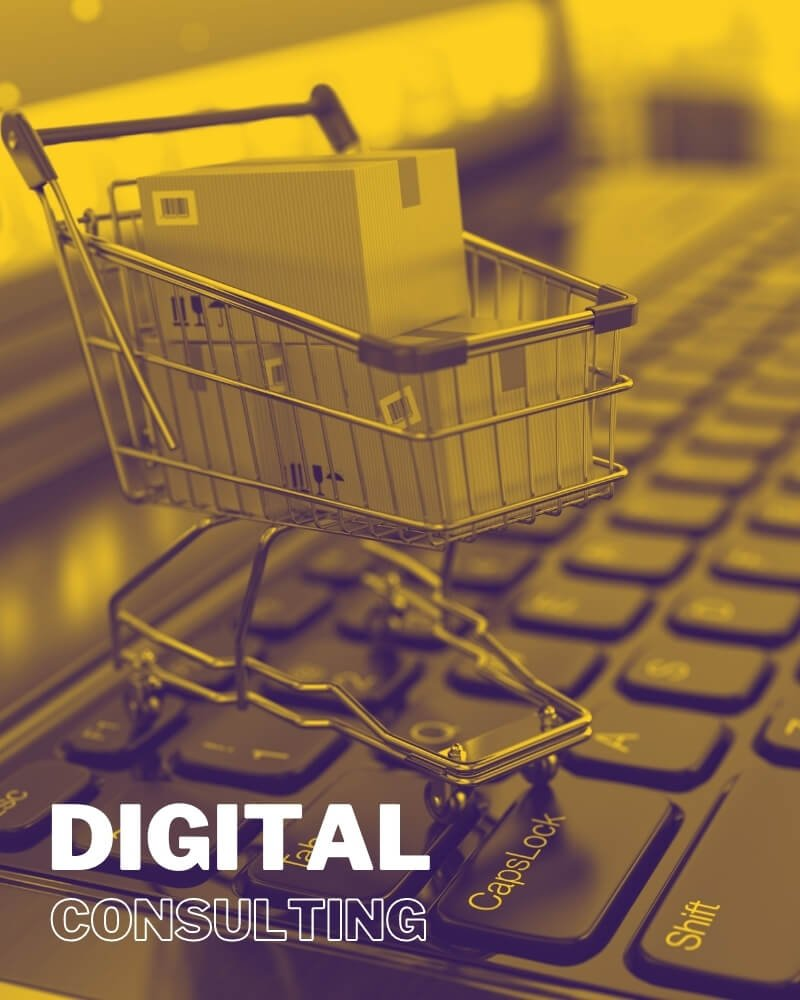 Digital Social and E-commerce Consulting - Rohit Jayakaran